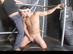 Best horny blowjob clip...