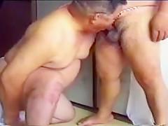 gay N29...