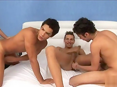 Foursome lick nipple and ass fuck...