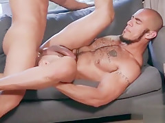 gay N136...