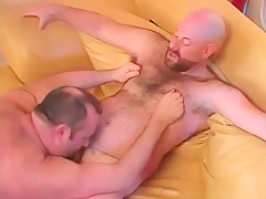 Gay licking ass couch...