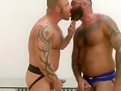 gay N165...