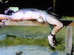 Naked slave dirty clean the barn big balls...