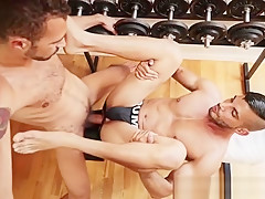 Hot horse gym gay porn 27732 at mo...