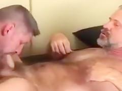 gay N116...