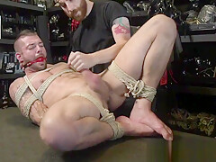 Frogtied stud dominated and edged