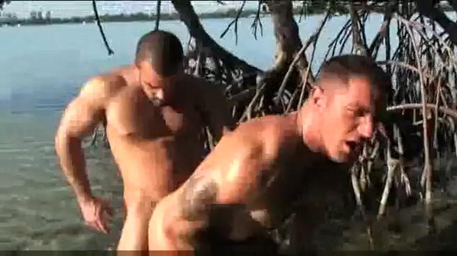 sex jovenes gay comiendo semen