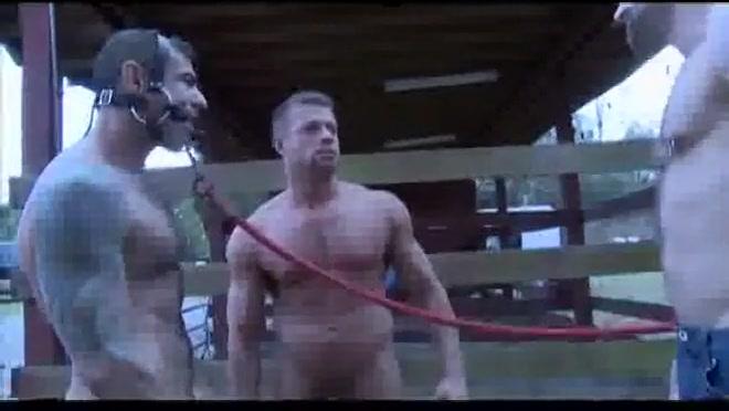 Bullwhipped revenge Download film porn