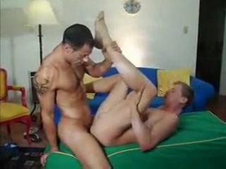 Dick Perfection Hamster porn beach