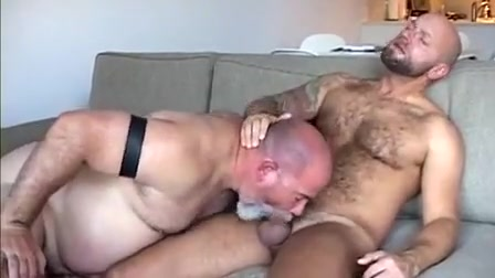 2 bear engulf and cum Milf has chocolate for dinner