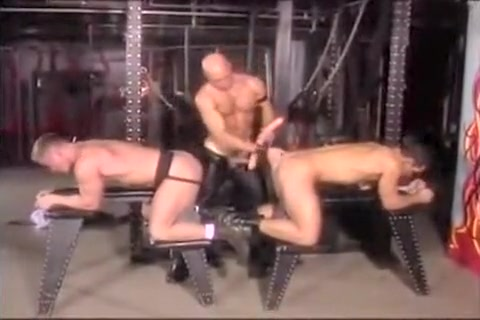 Hottest male in crazy hunks, bdsm homo sex video Free fresh black porn