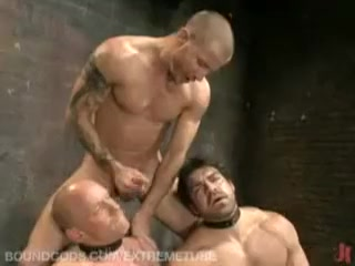 Hottest male in horny bdsm, fetish homo adult video Xxx women masterbating gifs