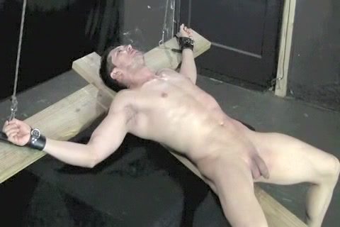 Fabulous male in amazing bdsm gay adult video Naked women sex wrestling