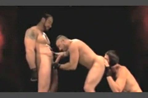 Mixed Wrestling With 2 Girls Big tits pornstar pics