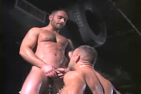 Amazing male in incredible bears, oldy homo xxx clip naked wemen sucking dicks