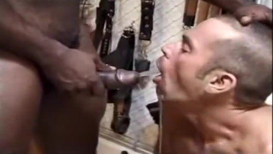 Black Masters with whire slave bitches King cobra sperm