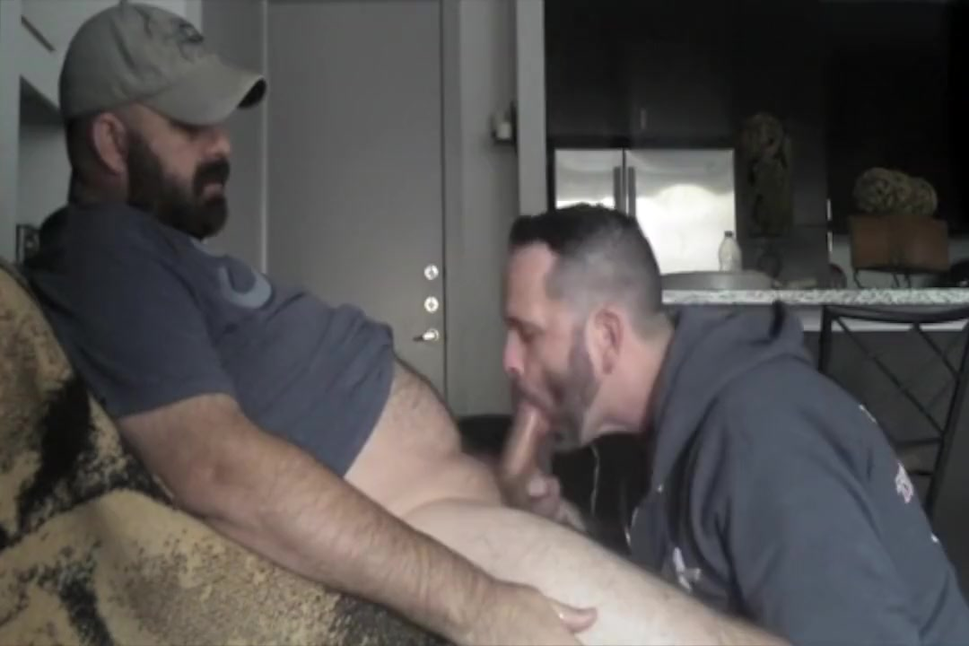 bear gets a blowjob How to say are you hookup in french