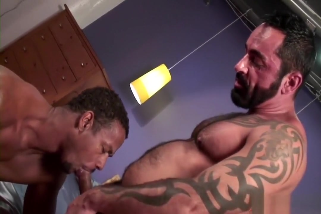 Aaron fucks Tom raw A Fat Naked Women