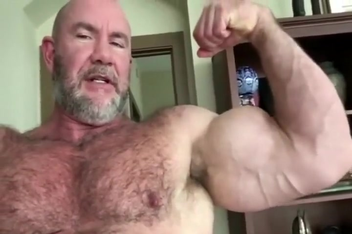 bodybuilder bear Hot boobs shake sexi