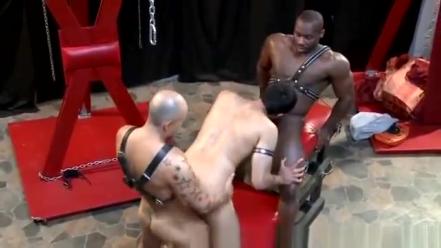 Lustful Interracial Studs In Tats Fucking forced drunk sex clips