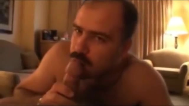 bears porn movies video clips