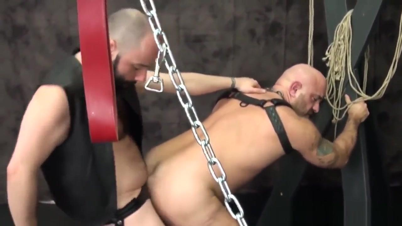 Bald bear duo bareback assfucking doggystyle Woman wanting sex in Diekirch