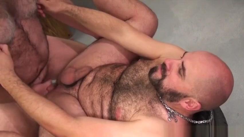 Bear sucks mormons cock Hedonism Ocho Rios Nudist Photos