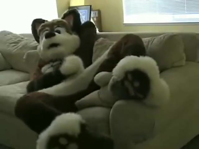 fursuit pawing off making nose Incredibly sexy sex wouldnt leave u indifferent
