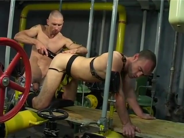 Dildo Skinhead Fun Xxx Sex Hot Hd Download