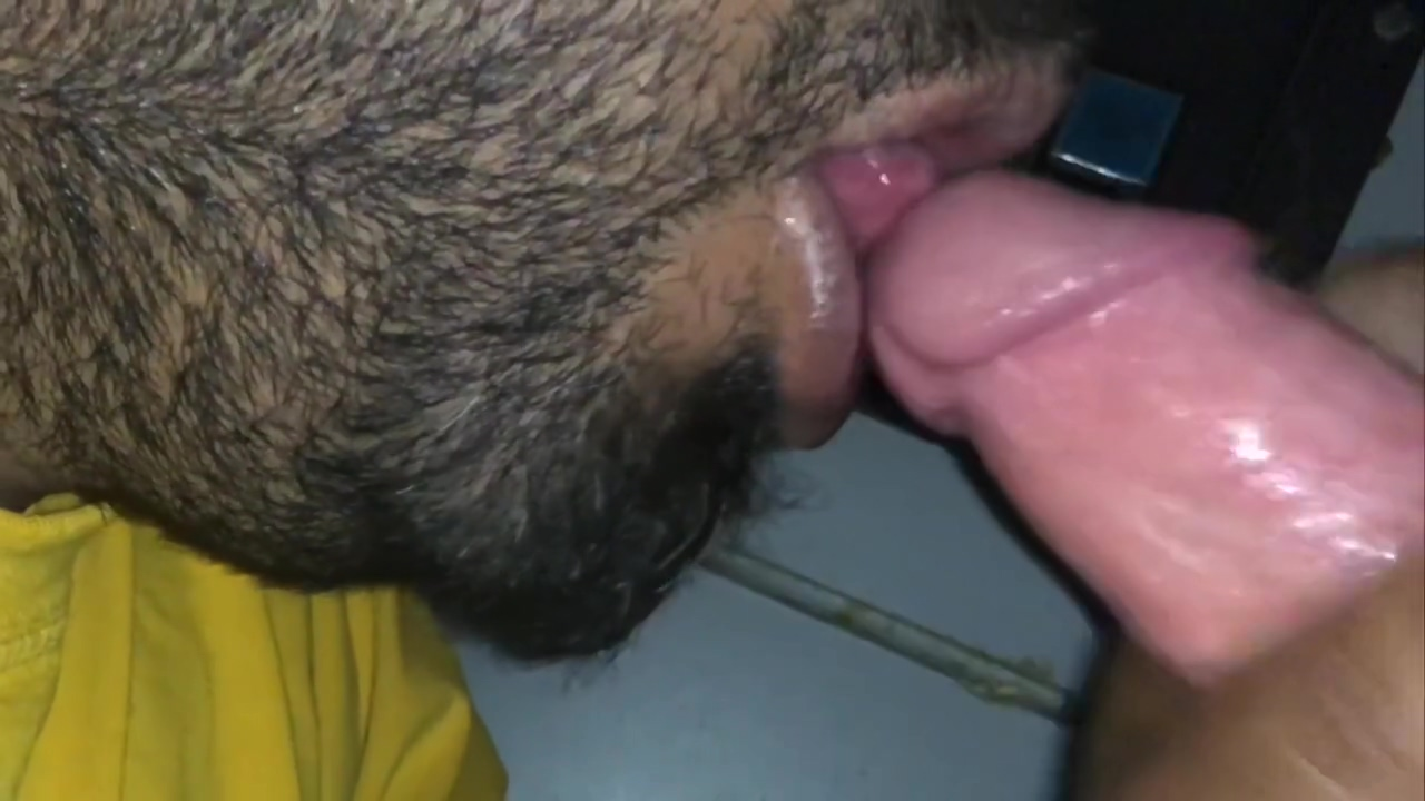 Sucking a nice big white dick at a Gloryhole Adult lonelys white girl in Pilsen