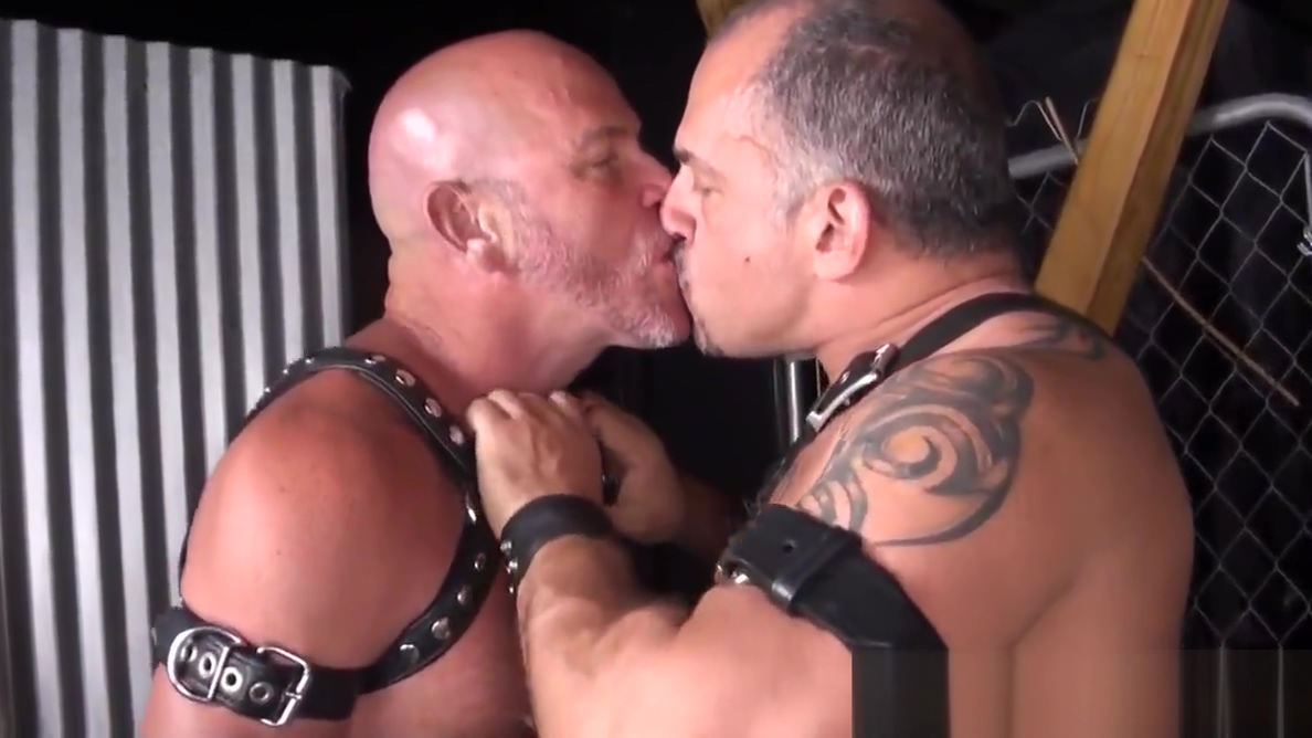 Bdsm Leather bears licking ass in group sex secret sex fantasy women