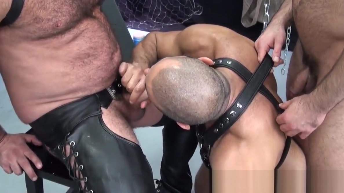 Mature bear suspended during bareback fucking Big Porn Hd X Vedio