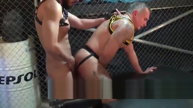 Caged and Fucked Animal and stars porn sucking