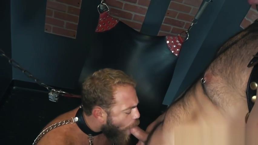 Doggystyle barebacked bear sucking hard cock Memek orang gendut