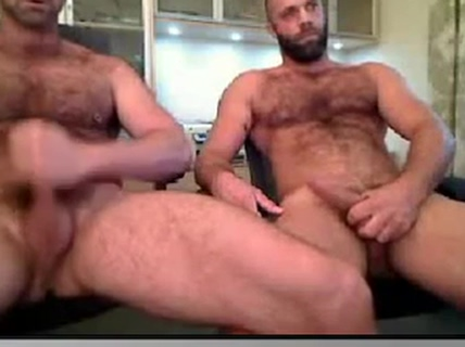 bear cam czech harem porn tube