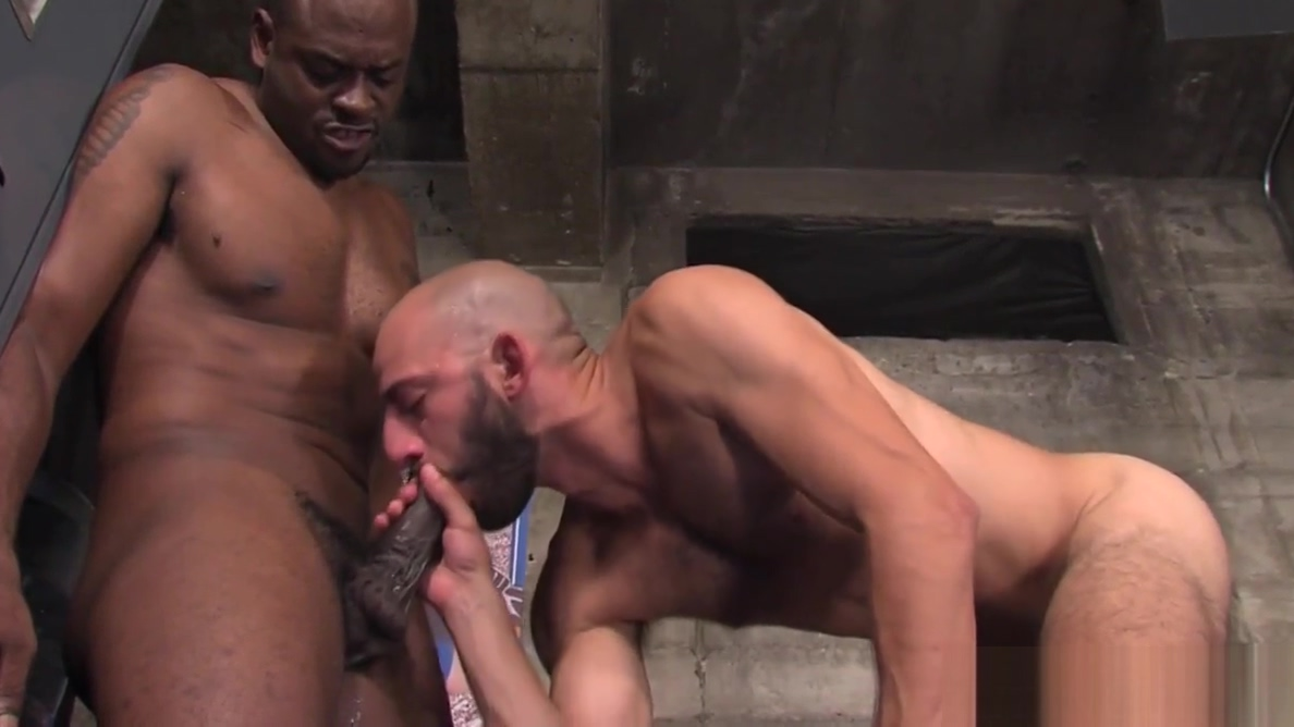 Gay dude sucks black dong top black female model