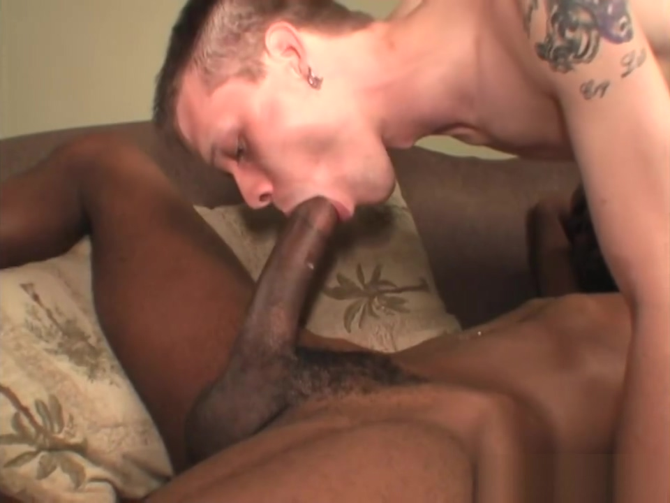 Petite white guy gets a massive black cock free sex animail japan video