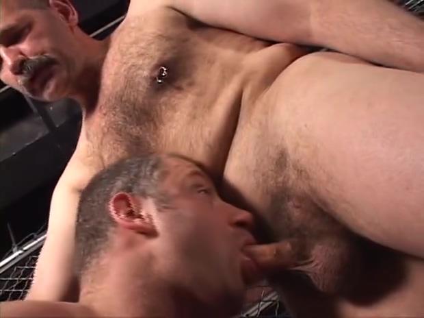 Bear Ass trisha sex video clip