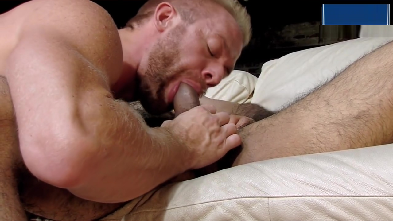 Blonde Bearded Hunk Takes Hairy Muscle Studs Uncut Cock Love letter to ur boyfriend