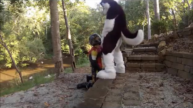 Husky bumps biker Time to spank