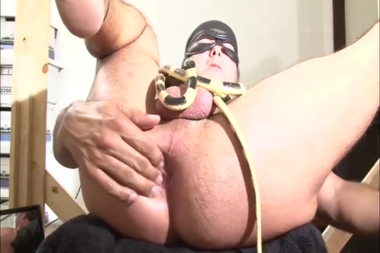 Rock and his Snake Nude women in restraints