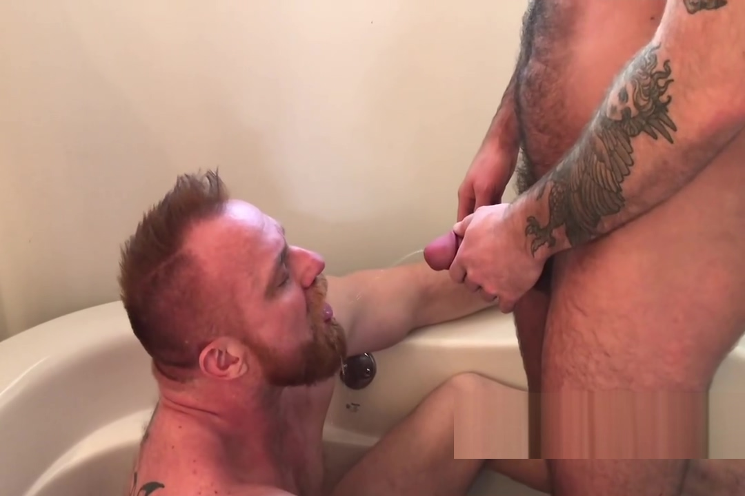 ginger bear gets pissed on Fil am dating