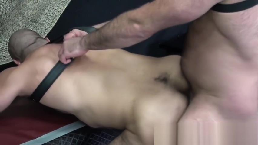 Dicksucking bald bear gets unsaddled Boy in shorts pics