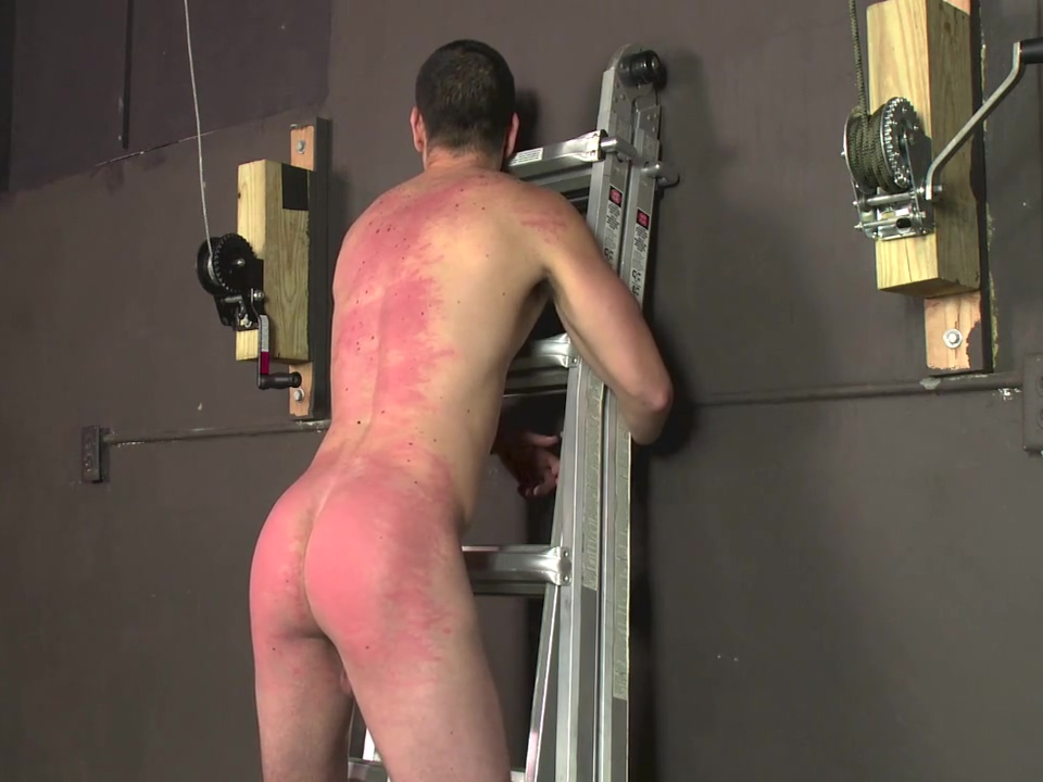 tomas-whipping boy part 4 0lympic swimmers naked