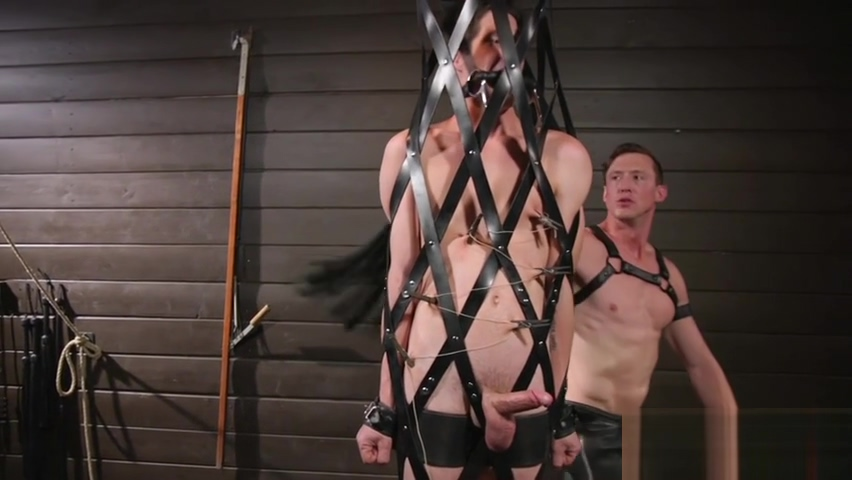 Punished stud getting humiliated during BDSM Freelive sex cam