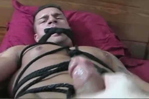 Braden Tied and Milked Naked girls bum hole lick