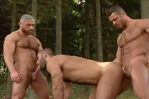 Horny dudes outdoor grand thef auto sex