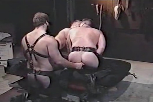 VINTAGE LEATHER BEARS Small tits and ass porn