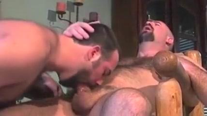 Bear sodomizated Penpal girls