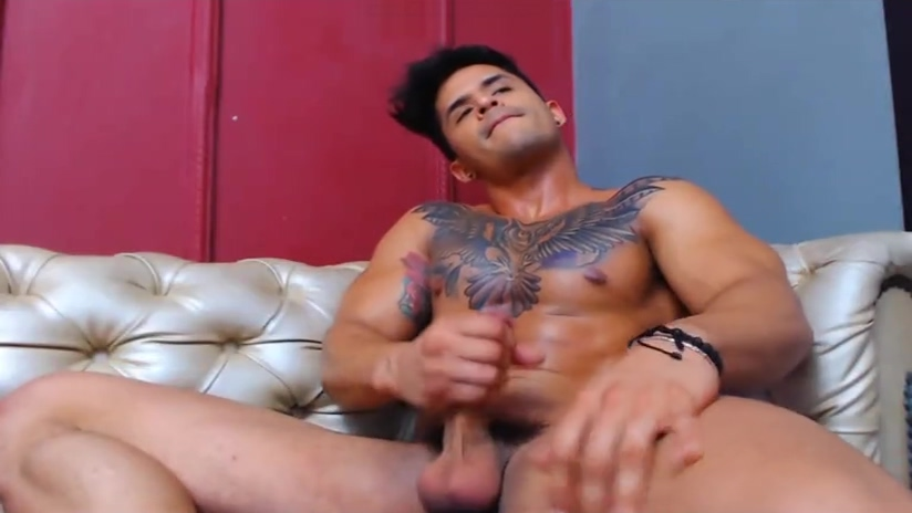 Excellent xxx clip homo Muscle crazy only for you shemale sex movies on dvd